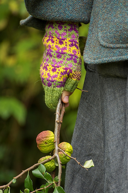Felix's Mountain Time mitts and flowering quinces - © Jeni Reid