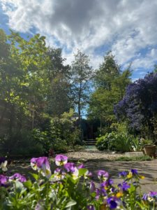 a photo of a beautiful small garden, with greenery, tress, flowers, and a gravel path leading off into the distance