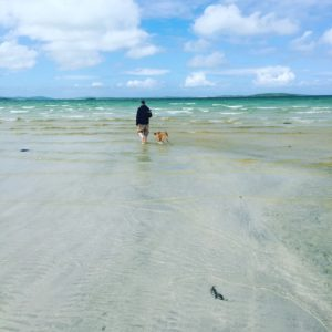 a photo of a person and a dog walking away into the distance on a white sand beach